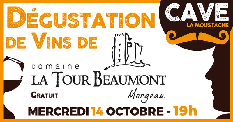 Dégustation de Vins de La Tour Beaumont