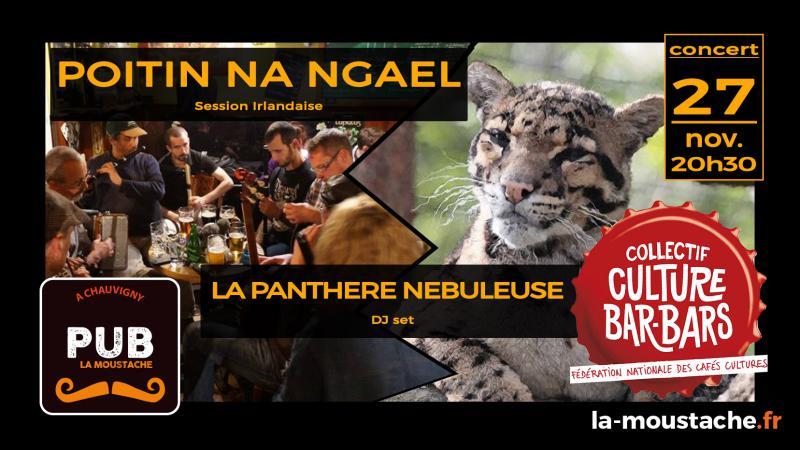 FESTIVAL CULTURE BAR-BARS : Poitin Na Ngael + La Pantère Nébuleuse