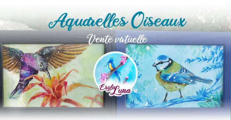 Nouvelles aquarelles oiseaux disponibles