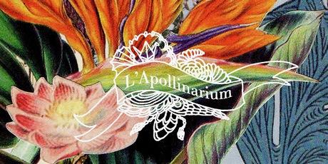 L'Apollinarium