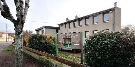 Office National des Forêts